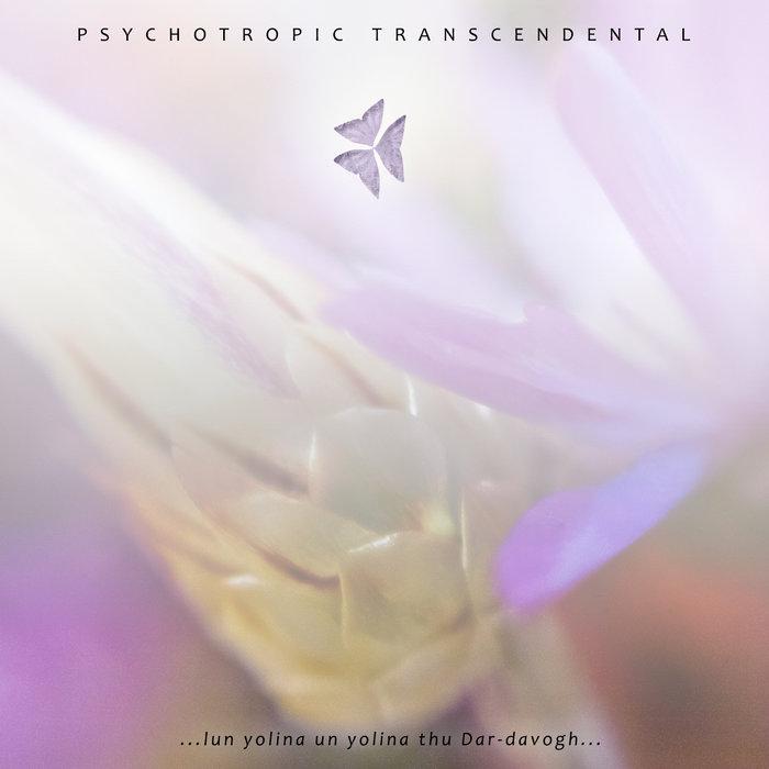 PSYCHOTROPIC TRANSCENDENTAL – ...LUN YOLINA UN YOLINA THU DAR-DAVOGH…