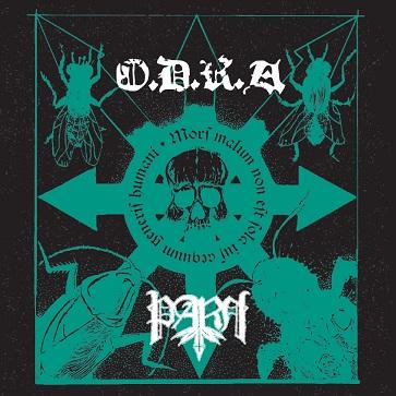 Przedpremierowy odsłuch splitu O.D.R.A i PARH