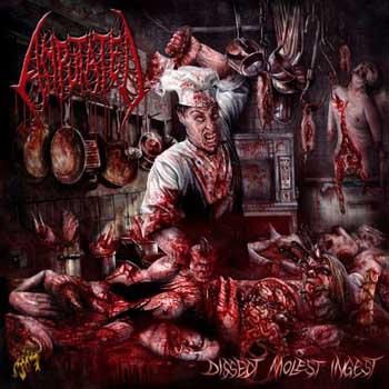 Amputated – Dissect, Molest, Ingest (w skrócie)